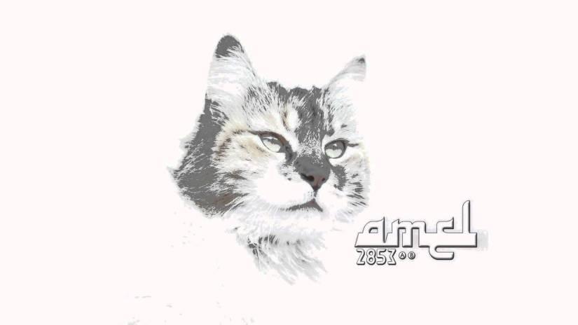 Amel, una banda con música en lasangre